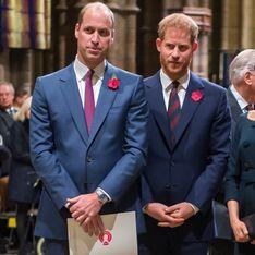 Schock-Enthüllung: Harry & William machen BBC für Dianas Tod verantwortlich