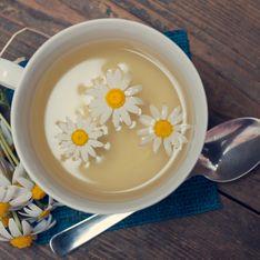 Tutti i benefici della camomilla per il benessere del nostro corpo