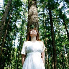 Oroscopo celtico: ad ognuno il suo albero