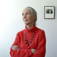 Jane Goodall: Ihr Kampf für die Schimpansen