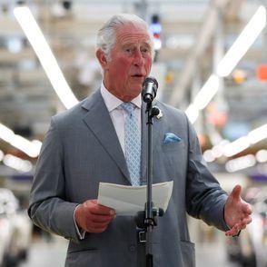 Harry und Meghan: So reagiert Prinz Charles auf Lilibet Diana