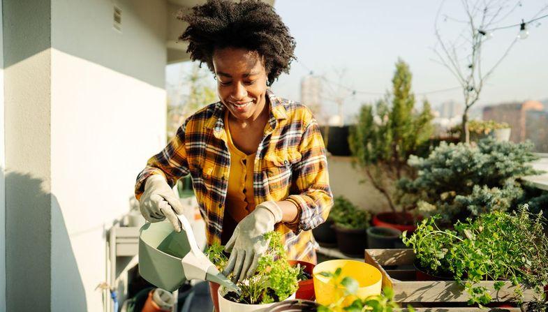 Quelles plantes pour son balcon ? Nos 4 conseils essentiels