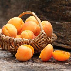Nos idées gourmandes pour sublimer les abricots