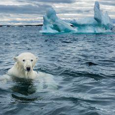 Réchauffement climatique : souffrez-vous d'éco-anxiété ?