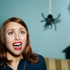 Sognare ragni: scopri cosa può indicare vedere in sogno questi piccoli animali che incutono sempre un po' di paura