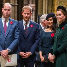 Harry und Meghan: So nah stehen sie William und Kate wirklich