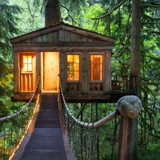 Im Wald zu Hause: Die schönsten Baumhaushotels in Deutschland