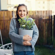 Le piante da giardino resistenti al freddo: ecco le più belle