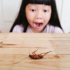 Paura degli insetti: alla scoperta dell'entomofobia