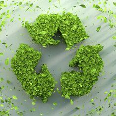Giornata internazionale sulla consapevolezza degli sprechi alimentari: ecco come ridurli