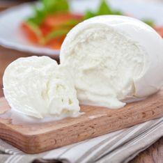 La mozzarella e gli altri formaggi in gravidanza: quali mangiare