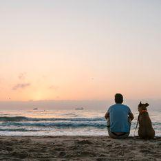 Frasi belle sui cani: citazioni e aforismi sugli amici a quattro zampe