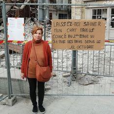 Hugo Clément lève le voile sur le sort de Marius, le chat bloqué après l'effondrement d'un immeuble