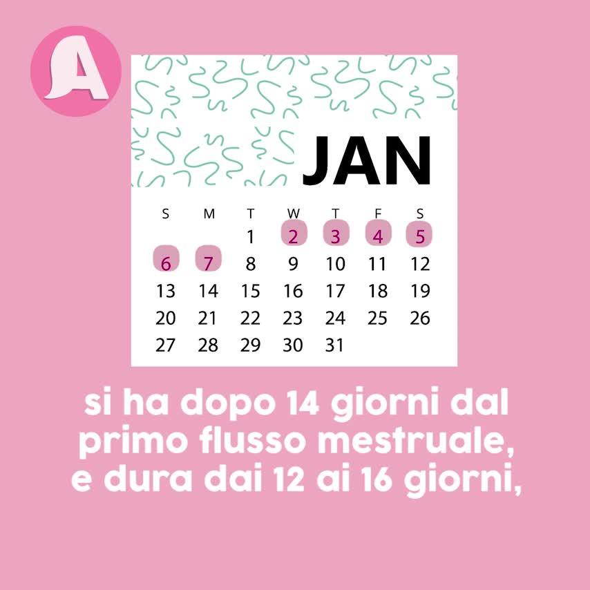 Calendario Mestruale Giorni Fertili.Giorni Fertili Come Calcolarli