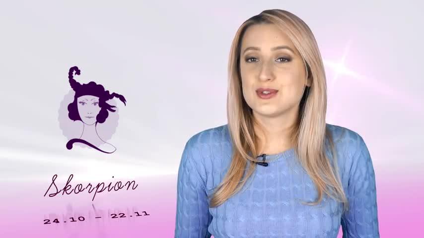 skorpion mann und widder frau forum